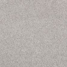 Shaw Floors Value Collections Xvn06 (t) Frosted Ice 00510_E1239