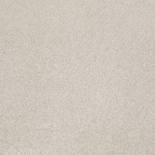 Shaw Floors Value Collections Xvn07 (s) Mist 00107_E1240