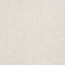 Shaw Floors Value Collections Xvn07 (t) Natural Cotton 00110_E1241