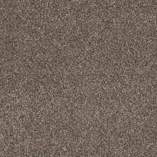 Shaw Floors Value Collections Xvn07 (t) Saddle 00718_E1241