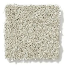 Shaw Floors Vivacious I Flax 00104_E9008