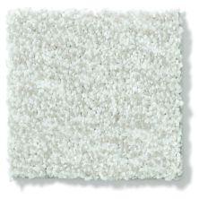 Shaw Floors Vivacious I Linen 00110_E9008