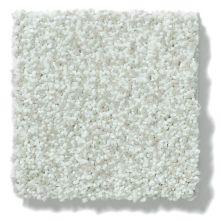 Shaw Floors Vivacious II Linen 00110_E9009