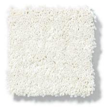Shaw Floors Vivacious III Porcelain 00101_E9010