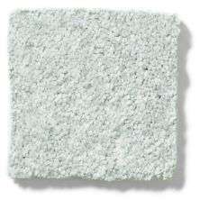 Shaw Floors Vivacious III Silver Glitz 00500_E9010