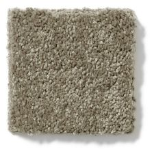 Shaw Floors Vivacious III Fleece 00704_E9010