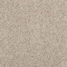 Shaw Floors Spice It Up Shaker Beige 00102_E9013