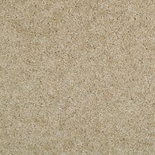 Shaw Floors Act On It Honeycomb 00104_E9015
