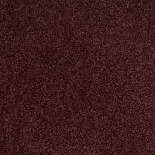 Shaw Floors Value Collections Origins Net Berry 00810_E9025