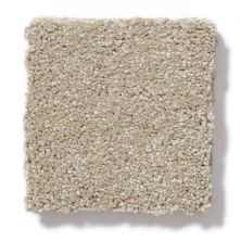 Shaw Floors Value Collections Invitation Only III Net Straw Hat 00701_E9028