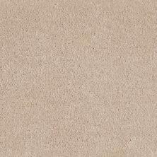 Shaw Floors Value Collections Optimum Net White Fox 00106_E9046