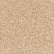 Shaw Floors Value Collections Optimum Net Shadow 00743_E9046