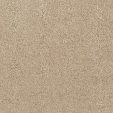 Shaw Floors Value Collections Optimum Net Warm Stone 00744_E9046