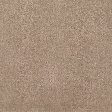 Shaw Floors Value Collections Optimum Net Thornwood 00747_E9046