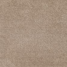 Shaw Floors Value Collections Optimum Net Rockport 00751_E9046
