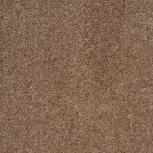 Shaw Floors Value Collections Optimum Net Cobble Hill 00753_E9046