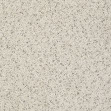 Shaw Floors Value Collections Spice It Up Net Dover 00100_E9090