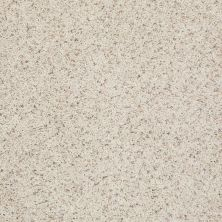 Shaw Floors Value Collections Spice It Up Net Monterey 00101_E9090