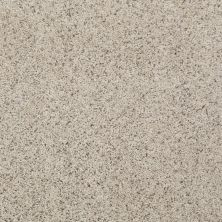 Shaw Floors Value Collections Spice It Up Net Tyler Taupe 00103_E9090