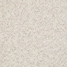 Shaw Floors Value Collections Spice It Up Net Parchment 00104_E9090