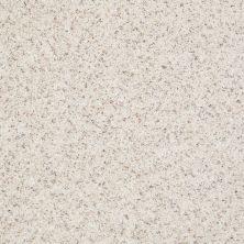 Shaw Floors Value Collections Spice It Up Net Parchment 00104_E9090