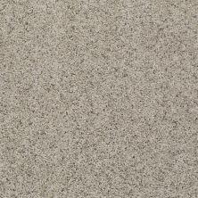 Shaw Floors Value Collections Spice It Up Net Kensington 00700_E9090