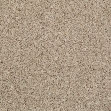 Shaw Floors Value Collections Spice It Up Net Market Square 00701_E9090