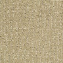 Shaw Floors Value Collections Fall For Me Net Beeswax 00200_E9115