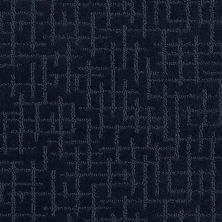 Shaw Floors Value Collections Fall For Me Net New Navy 00402_E9115
