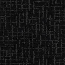 Shaw Floors Value Collections Fall For Me Net Tuxedo 00506_E9115