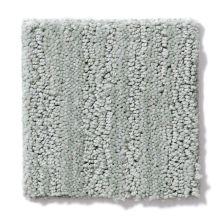 Shaw Floors Value Collections Tantalizing Net Coastline 00450_E9116
