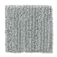 Shaw Floors Value Collections Tantalizing Net Titanium 00551_E9116