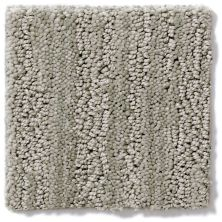 Shaw Floors Value Collections Tantalizing Net Vintage Pewter 00552_E9116
