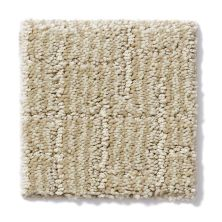 Shaw Floors Value Collections Perfectly Styled Net Dreamy Beige 00151_E9118
