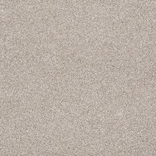 Shaw Floors Value Collections Sweet Life Net Doeskin 00112_E9124
