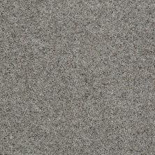 Shaw Floors Value Collections Look Forward Net Terrace 00551_E9125