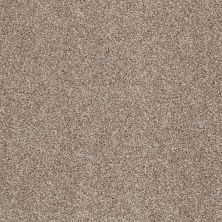 Shaw Floors Value Collections Look Forward Net Sombrero 00710_E9125