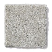 Shaw Floors Great Choice Marble 00113_E9130