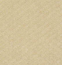Shaw Floors Value Collections Pace Setter Net Linen 00101_E9137