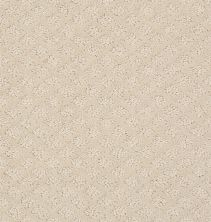 Shaw Floors Value Collections Pace Setter Net Canvas 00103_E9137