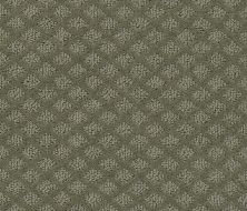 Shaw Floors Value Collections Pace Setter Net Pewter 00513_E9137