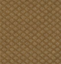 Shaw Floors Value Collections Pace Setter Net Leather Bound 00702_E9137