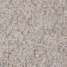 Shaw Floors Value Collections Pembrooke 12′ Net Rocky Road 00702_E9151