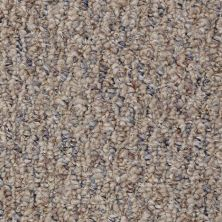 Shaw Floors Value Collections Pembrooke 12′ Net Windmill 00704_E9151