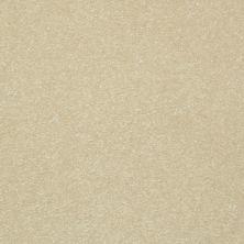 Shaw Floors Value Collections Passageway 1 12 Net Cream 00101_E9152