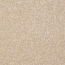 Shaw Floors Value Collections Passageway 1 12 Net Ecru 00103_E9152