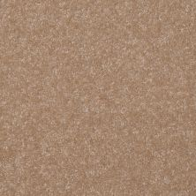 Shaw Floors Value Collections Passageway 1 12 Net Muffin 00106_E9152