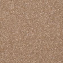 Shaw Floors Value Collections Passageway 1 12 Net Muffin 00106_E9152