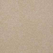 Shaw Floors Value Collections Passageway 1 12 Net Linen 00107_E9152
