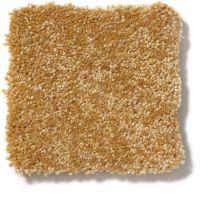Shaw Floors Value Collections Passageway 1 12 Net Golden Rod 00202_E9152